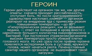 Героин